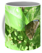 Garden With A Blue Morpho Butterfly With Wings Closed Coffee Mug