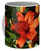 Garden With Lily Buds And A Blooming Orange Lily Coffee Mug