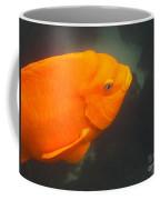 Garibaldi 1 Coffee Mug