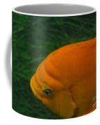 Garibaldi 3 Coffee Mug