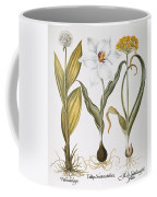 Garlic, 1613 Coffee Mug