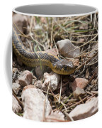 Garter Snake On The Trail In The Pike National Forest Of Colorad Coffee Mug