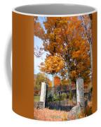 Gate And Driveway Coffee Mug