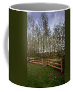 Gates To The Birch Wood Coffee Mug