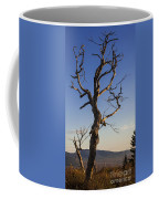 Gathering Light Coffee Mug