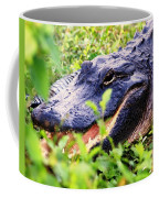 Gator 1 Coffee Mug