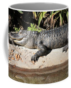 Gator Coffee Mug