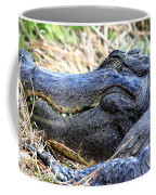 Gator Head Coffee Mug