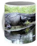 Gator On The Shore Coffee Mug