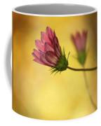 Gazania Affair  Coffee Mug