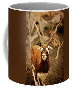 Gazelle Coffee Mug