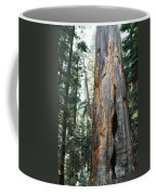 General Grant Grove Sequoia Coffee Mug