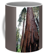 General Grant Grove Streaming Light Coffee Mug