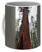 General Sherman Tree Portrait Coffee Mug