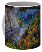 Genesee River Gorge II Coffee Mug