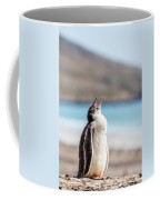 Gentoo Penguin Calling For Mother On Shingle Coffee Mug