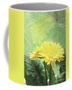 Gerber Daisy And Reflection Coffee Mug