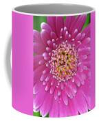 Gerber Daisy - Sweet Memories 01 Coffee Mug