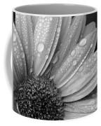 Gerbera Daisy After The Rain 2 Coffee Mug