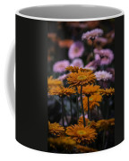 Gerbera Daisy Garden Coffee Mug