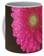 Gerbera Fresh Coffee Mug