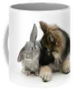German Shepherd And Rabbit Coffee Mug by Mark Taylor
