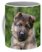 German Shepherd Puppy IIi Coffee Mug by Sandy Keeton