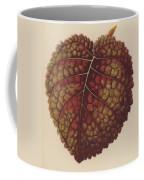 Gesnera Cinnabarina Coffee Mug