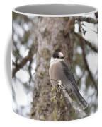 Get My Good Side-grey Jay Coffee Mug