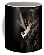 Ghost Orchid At First Light Coffee Mug
