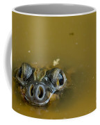Giant Amazonian River Turtle Coffee Mug