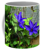 Giant Blue Clematis Coffee Mug