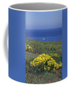 Giant Coeropsis, Blue Dicks And Ice Coffee Mug