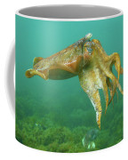 Giant Cuttlefish Coffee Mug