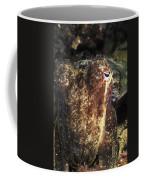 Giant Cuttlefish Camouflage Coffee Mug