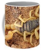 Giant Hairy Scorpion Coffee Mug