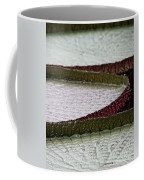 Giant Lilly Pads Coffee Mug