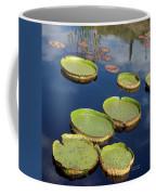 Giant Lily Pads Coffee Mug