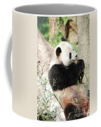 Giant Panda Bear Leaning Against A Tree Trunk Eating Bamboo Coffee Mug