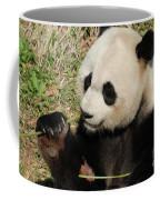 Giant Panda Feeding Himself Shoots Of Bamboo  Coffee Mug