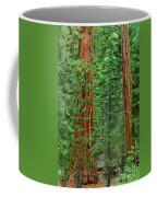 Giant Sequoias Sequoiadendron Gigantium Yosemite Np Ca Coffee Mug