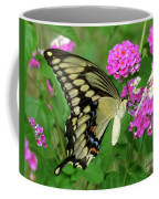 Giant Swallowtail Butterfly  IIi Coffee Mug