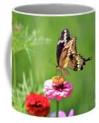 Giant Swallowtail Butterfly On Pink Zinnia Coffee Mug