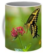 Giant Swallowtail Butterfly Coffee Mug