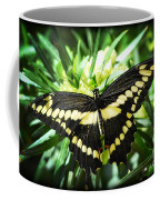 Giant Swallowtail Coffee Mug