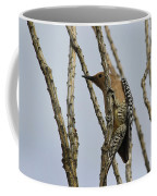Gila Woodpecker Coffee Mug