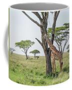 Giraffe 2 Coffee Mug