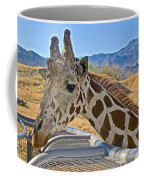 Giraffe At Feeding Station In Living Desert Zoo And Gardens In Palm Desert-california Coffee Mug