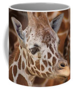 Giraffe - Camouflage Coffee Mug