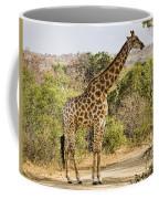 Giraffe Grazing Coffee Mug